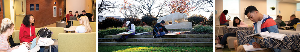 Students studying in three different locations on campus.